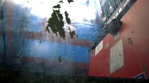 Winda przy Dmowskiego[br] znów zdewastowana