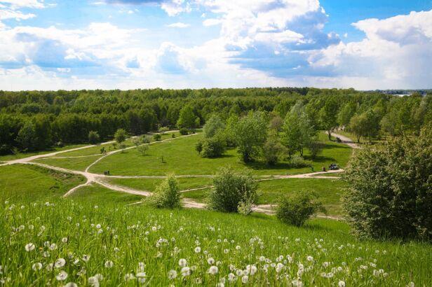 Park Cichociemnych na Ursynowie Urząd Dzielnicy Ursynów