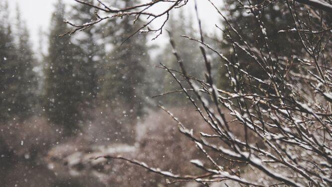 Pogoda na dziś: <br />deszcz, deszcz ze śniegiem i śnieg