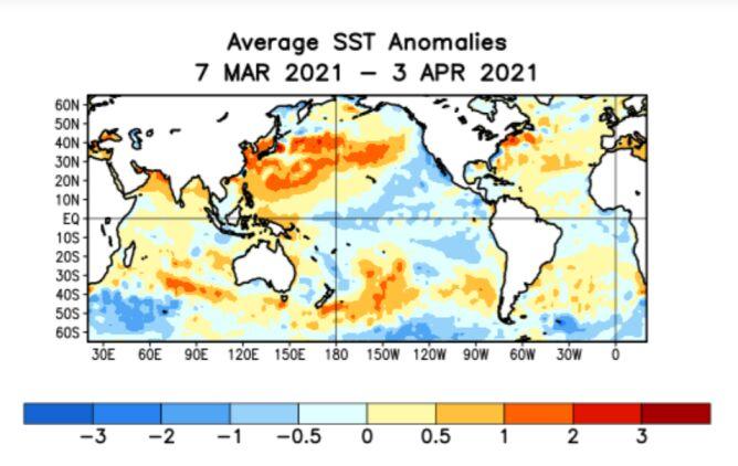 Odchylenie temperatury wód powierzchniowych w okresie 7.03-3.04 od normy z wielolecia 1981-2010 (CPC)