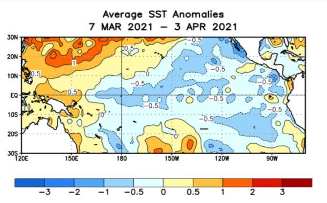 Odchylenie temperatury wód powierzchniowych Pacyfiku w okresie 7.03-3.04 od normy z wielolecia 1981-2010 (CPC)