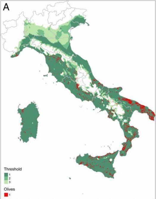 Włochy (K. Schneider, W. van der Werf, M. Cendoya, M. Mourits, J. A. Navas-Cortés, A. Vicent, A. Oude Lansink, PNAS (CC BY-NC-ND 4.0))